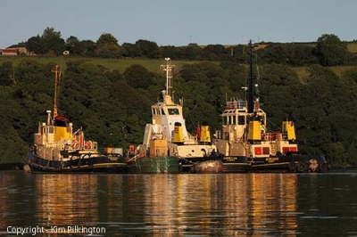 Three Tugs (Permission Kim Pilkington)